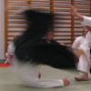 Nye tider for Aikido