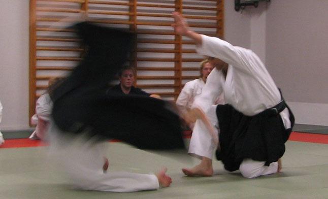 Demonstration af et aikido-kast